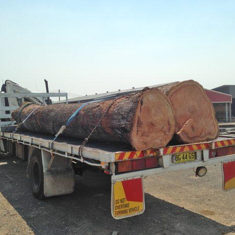 Reclaimed Bluegum logs