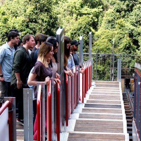 Blackbutt Platform Steps - Scenic R'way