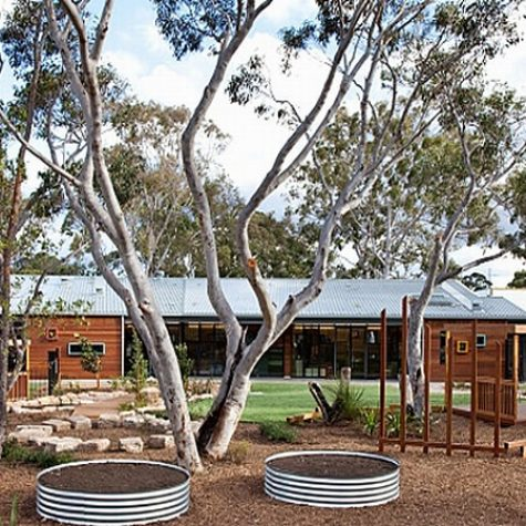 Blackbutt & Spotted Gum Landscaping Timbers - ANSTO