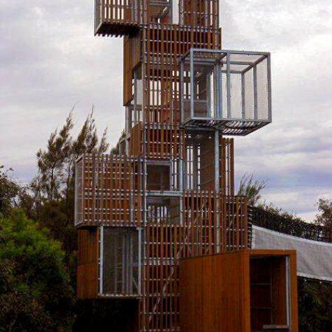 Blackbutt Structural Timber - Blaxland