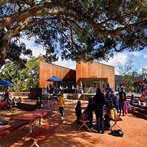 Blackbutt cladding - Taronga Park Zoo