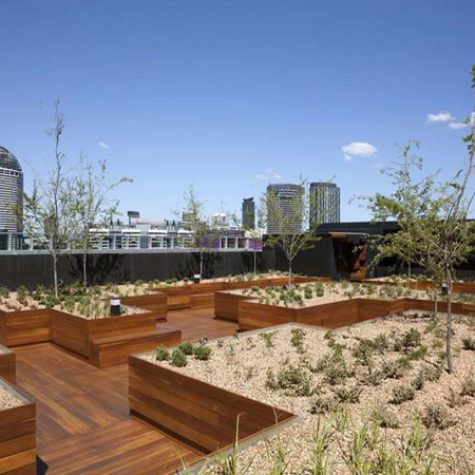 Spotted Gum Deck - The Quays