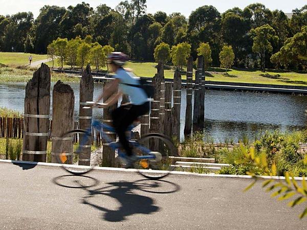 """Recycled"" Wharf Piles Sydney Park"