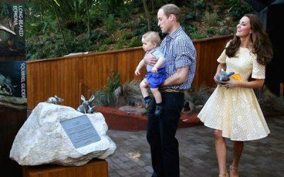 Will, Kate & George At Taronga Park Zoo